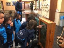 Colegio San Juan Bosco Visita Museo Miel Arapiles (3)